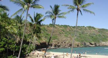 Descubre el escenario de Perdidos en Hawái