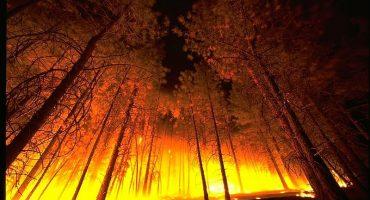 Rusia bajo las llamas
