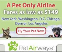 Pet Airways: una aerolínea pensada para animales