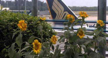 Top 10: ¿En qué aeropuertos quedarse tirado es un problema menor?