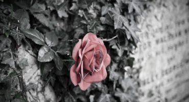 El encanto de los cementerios, segunda impresión