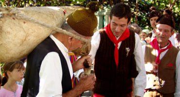 Madeira inicia septiembre con su fiesta del vino