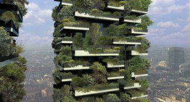 ¿Has soñado alguna vez con una cabaña en un árbol?