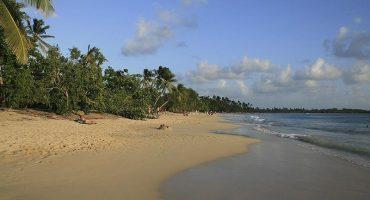 Isla Martinica: Raíces francesas con personalidad caribeña