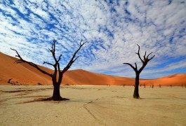 Dejando escapar la imaginación con fotografías de paisajes surrealistas