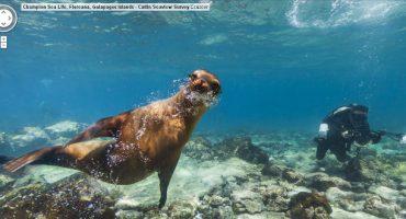 ¡Ya está disponible el Street View de las islas Galápagos!
