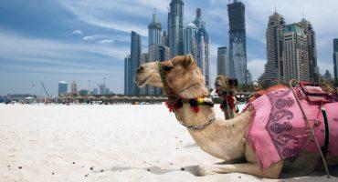 Turismo de salud: Dubái es el destino del 2015