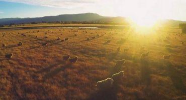 VÍDEO – Australia desde el cielo
