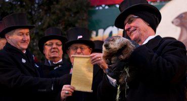 El Día de la Marmota: cuando un roedor predice el tiempo