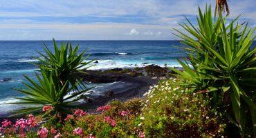 Gana un viaje a Canarias con la historia de tus vacaciones