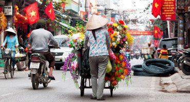 Visitar Vietnam durante una escala