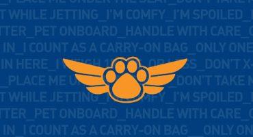 JetPaws: ¡volar con mascotas con jetBlue!