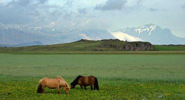 Islandia es el país más pacífico del mundo en 2015