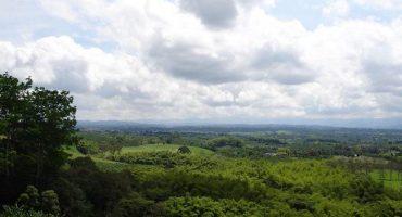 6 claves para conocer el «Eje Cafetero» de Colombia