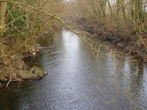 Río Urumea (País Vasco)