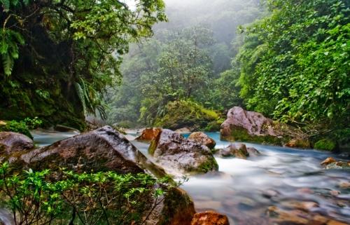 Uno de los parques nacionales de Costa Rica