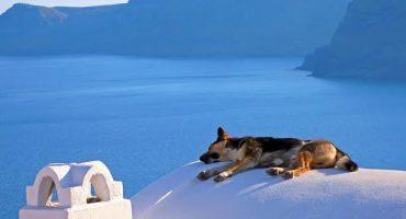 6 lugares increíbles donde echarte una siesta
