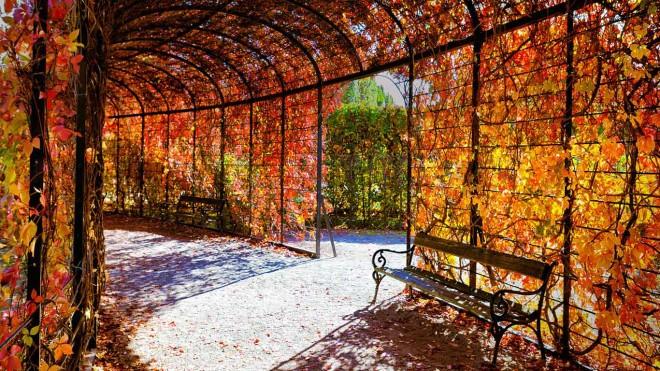Paseando por los jardines de Schonbrunn