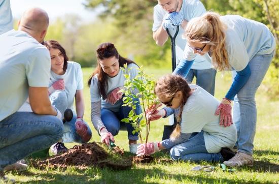 grupo-plantando