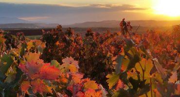 La Rioja, la región española más parecida a la Comarca del Señor de los Anillos