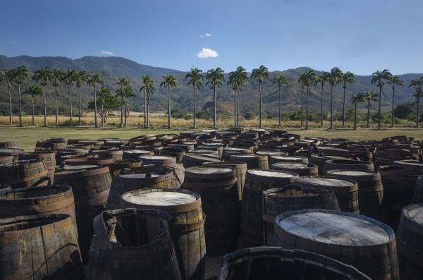 vasijas-ron-venezuela