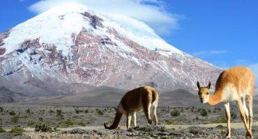 Destino del mes: Ecuador
