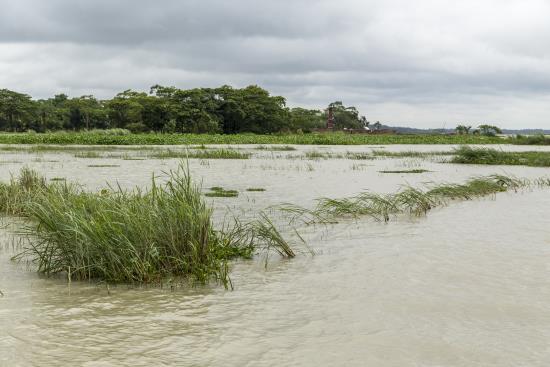 inundaciones-bangladesh