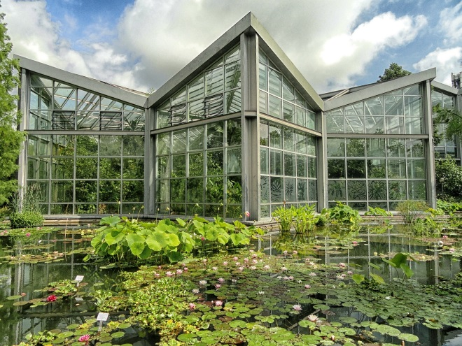 Jardín Botánico de Frankfurt