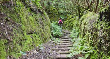 Los 7 paisajes naturales más espectaculares de Tenerife