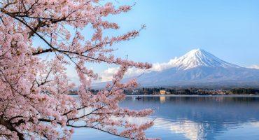 9 lugares muy especiales que ver en Japón