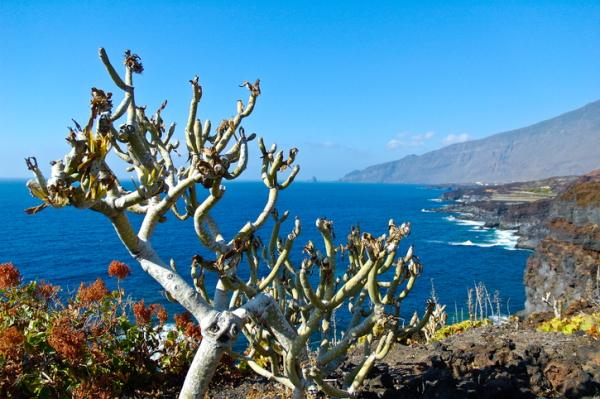 Isla de El Hierro (Islas Canarias)