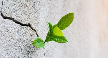 Verde esperanza: 8 lugares para cuando todo haya pasado