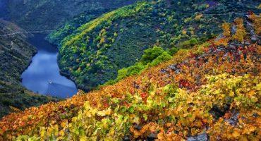 Qué ver y hacer en Galicia: turismo de calidad en el norte de España