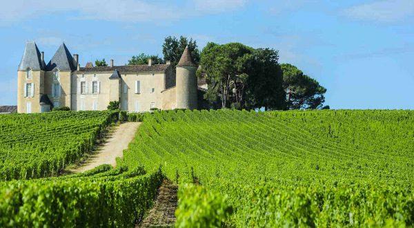 Los vinos de Burdeos