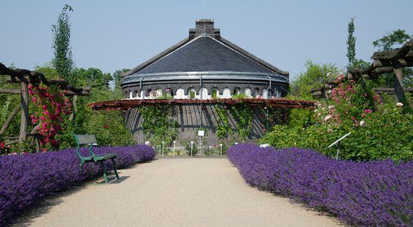 Jardín Botánico de Berlín