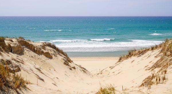 Playa de Le Porge