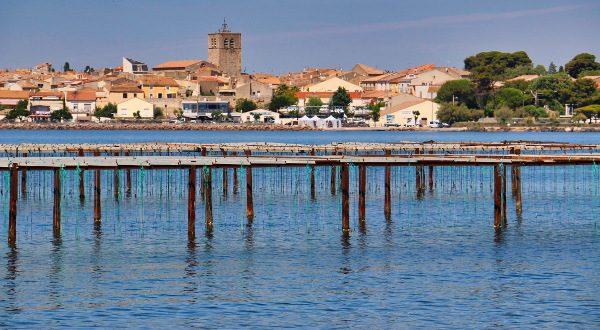 Laguna Thau, en Sète
