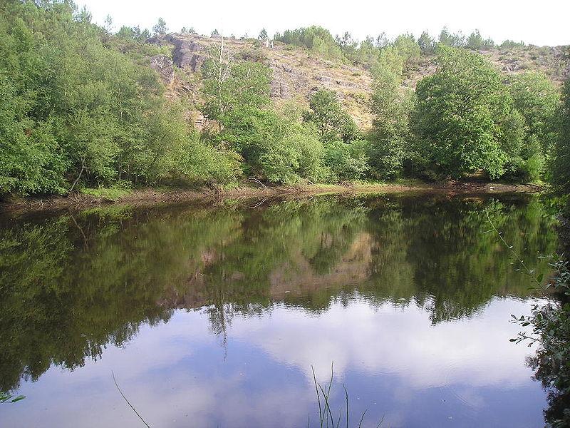 Bosque de Brocelianda