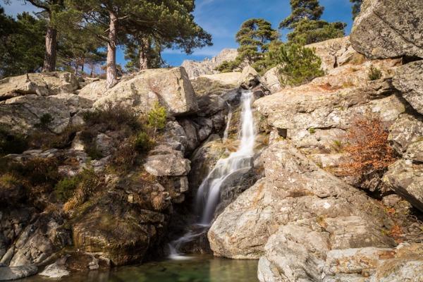 Bosque de Vizzavona (Córcega)